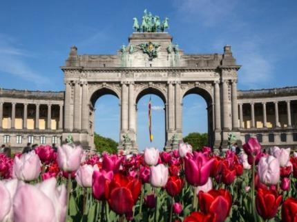 Belgie - Poznávací zájezdy