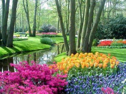 Jarn� Holandsko