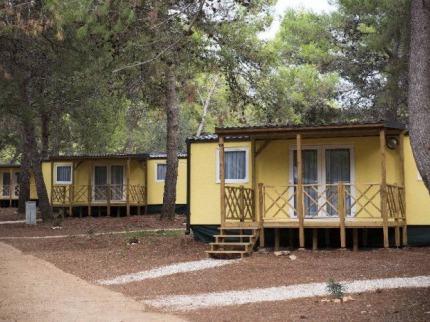 Camp Pineta