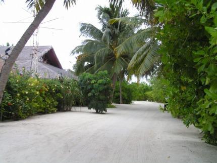 Full Moon Maledivy