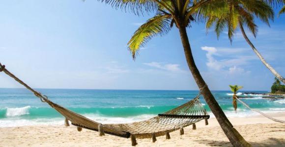 Užijte si Vaši exotickou dovolenou na Srí Lance
